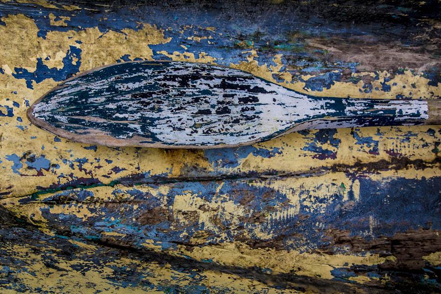 Remo da Canoa Amarela Daniela Dragone
