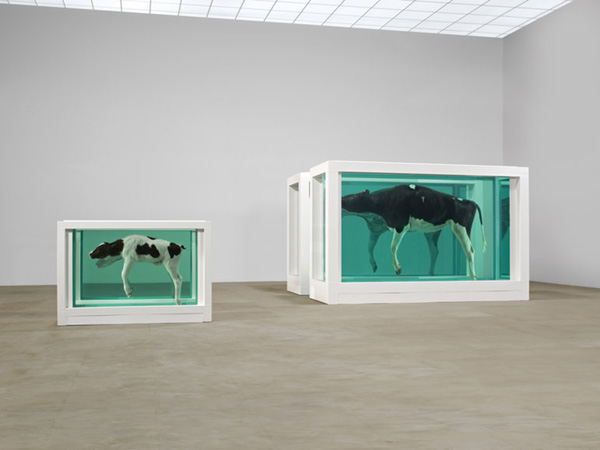 Mae e Filho Divididos (2003) | Tate-Modern