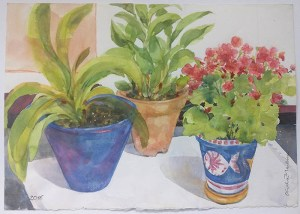 Três vasos