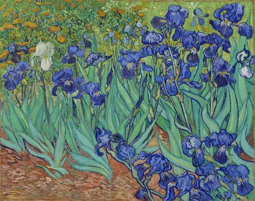 Lírios - Van Gogh