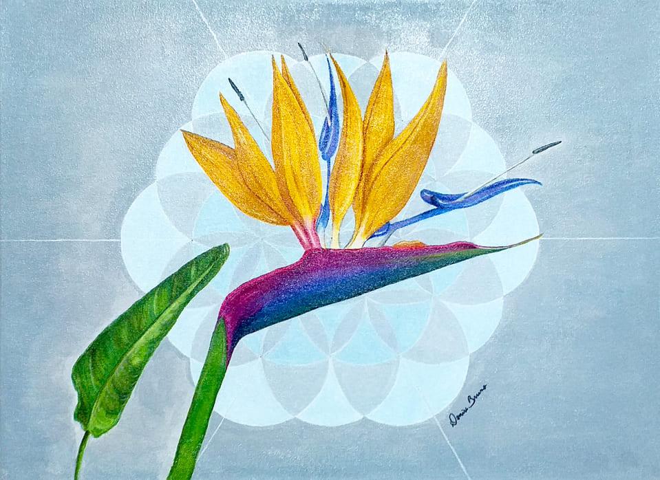Denise Bruno - Strelitzia e a Flor da Vida