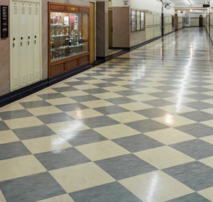 awesome-forbo-linoleum-flooring-linoleum-flooring