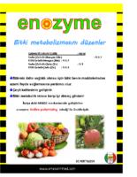 Enozyme
