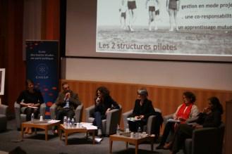 Intervention d'Alexandra Martin, Coordinatrice du Pôle Culture & Santé en Aquitaine © Estelle Lucas