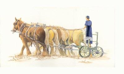 5  Horse Plow