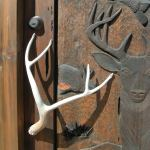 nature theme carved wood door