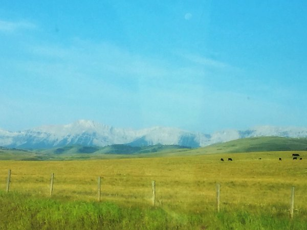 Day 69-Summer – Rocky Mountains foothills – Mati Messager