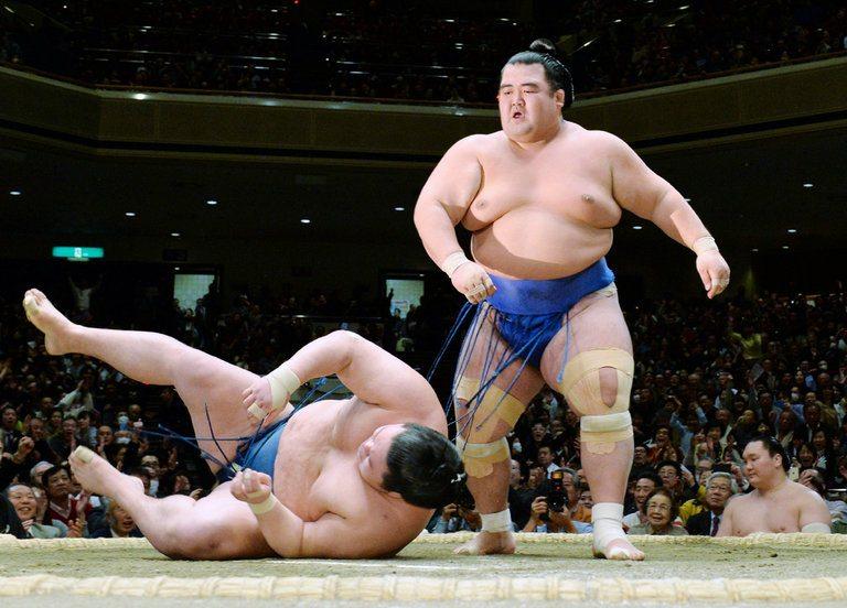 sumo, gulat ala jepang