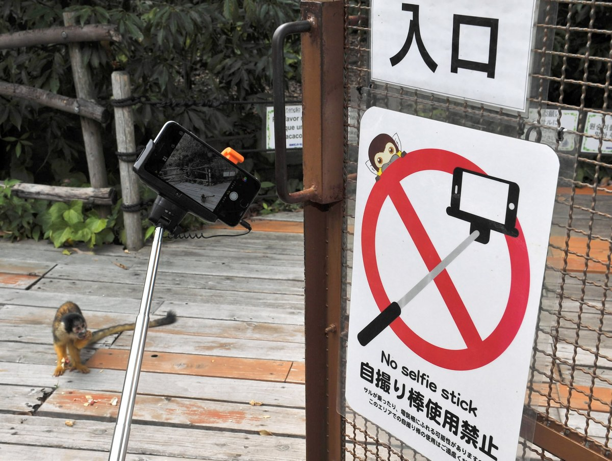 5 Tips Kultur Dalam Mengambil Foto Di Jepang