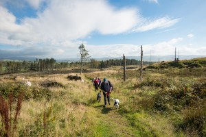 A group of people walking in a line along a path with dogs in a rural landscape.