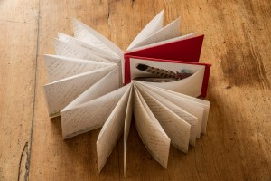 A concertina sketchpad with notes and sketches in.