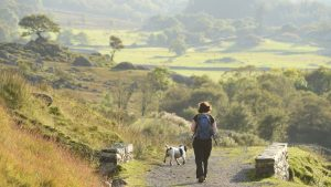 A woman walks with a dog along a path in a rural landscape.