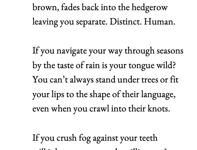 Melissa Davies poem close up