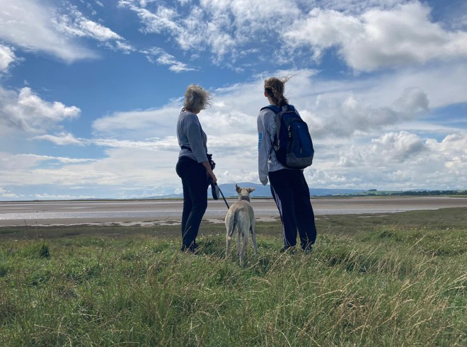 2 female figures facing away from camera with a dog in the middle. They are standing on grass looking over Solway Firth, with sand, fell and sky in distance.
