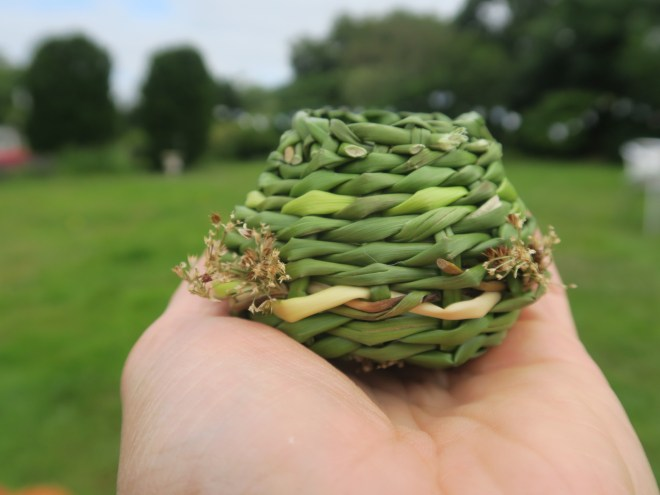 A hand-sized basket woven with freshly picked rushes: the basket is green and there are some of the grass flower heads poking out. The basket is being held in the outstretched hand of Lorna Singleton, and the blurred background of grass and trees suggests she is in a field.