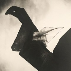 Kerchief Glove (Dior) :: Paris :: 1950 :: Irving Penn