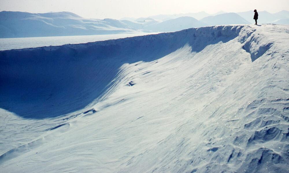 The Plaisted Polar Expedition