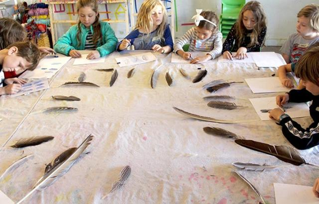 Group of student with paper & oil pastels observing feathers on table – easy nature drawing ideas for kids