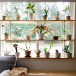 Hanging Plant Shelves The Artful Roost