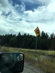 sign, steep