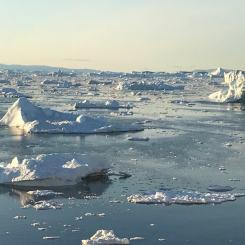 shimmering icebergs in the evening light