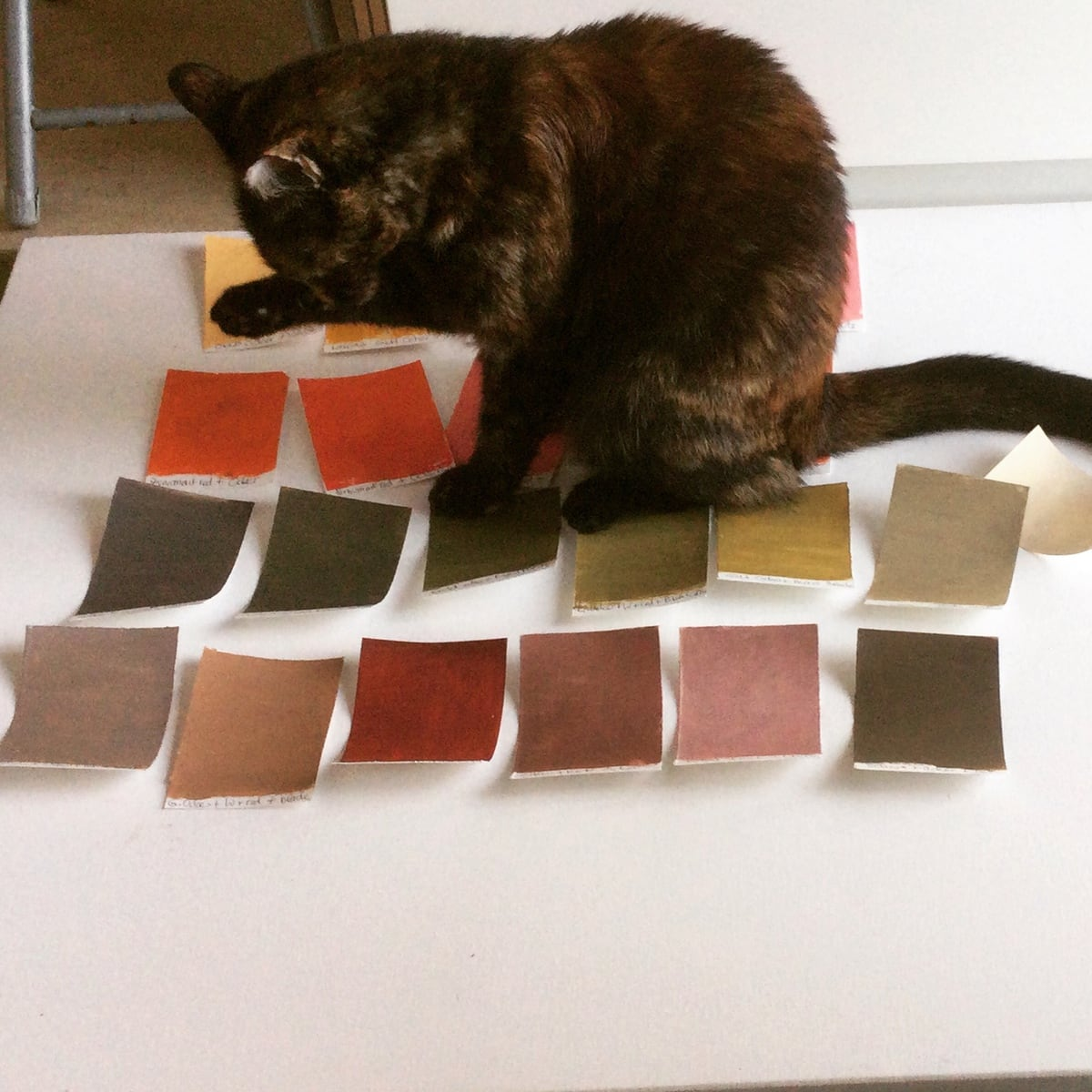 Kat loving the swatches