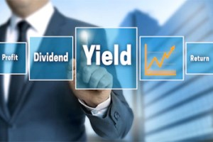 Dividend yield fund