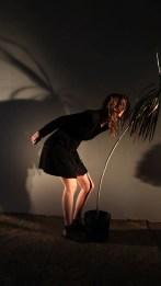 Ashley Bell Clark_Dancing Plant_2013