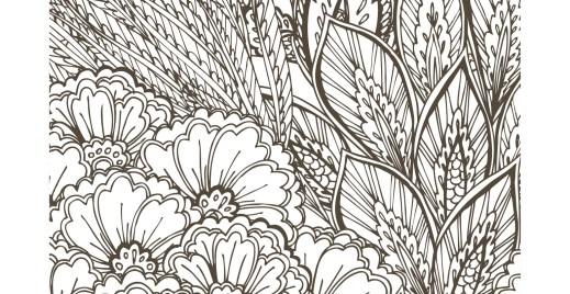 Coloriage gratuit, fleurs sauvages 9 mai