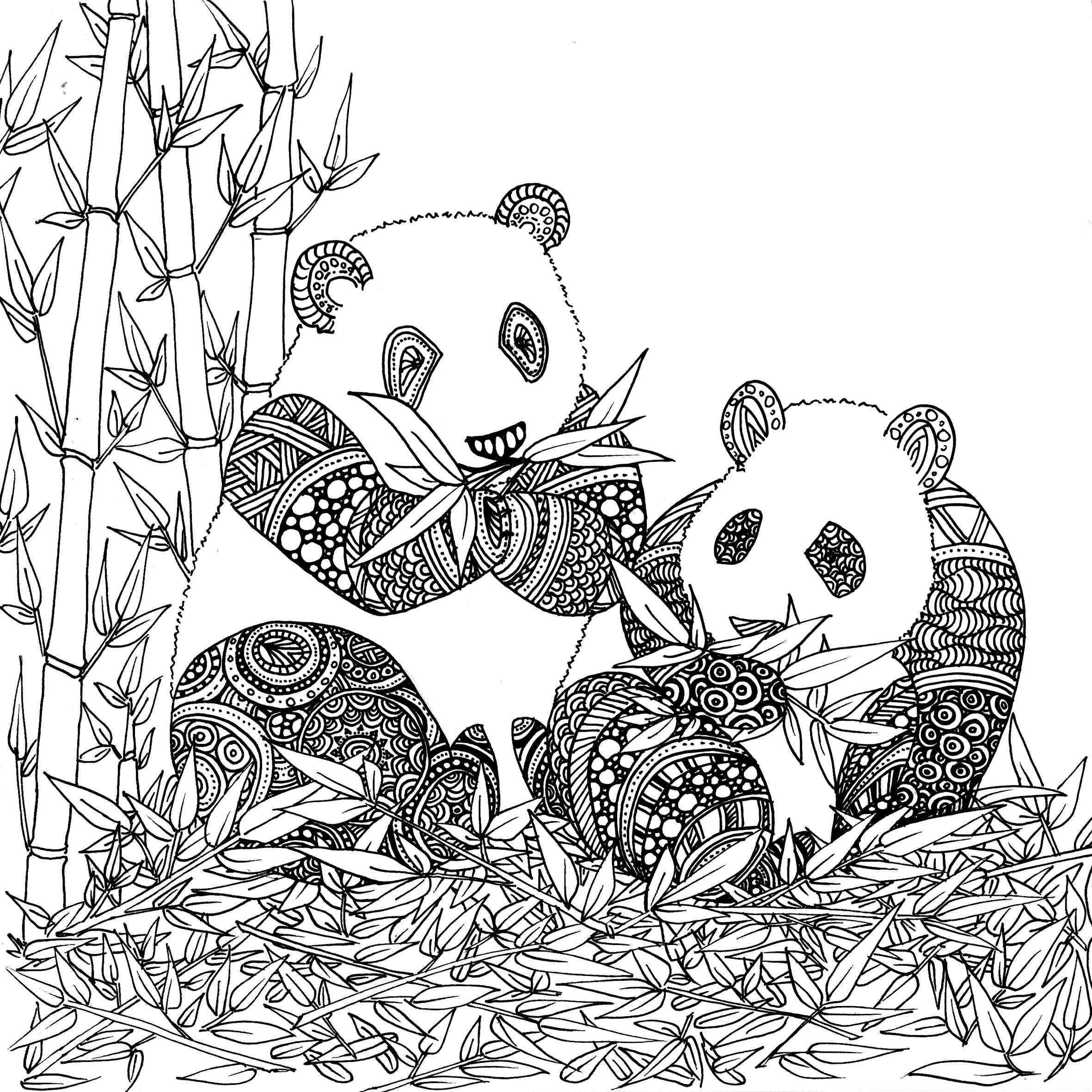Coloriage De Animaux Panda A Imprimer Par Chocobo Artherapie Ca