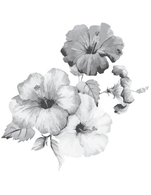 Coloriage gratuit à imprimer fleurs hibiscus grayscale