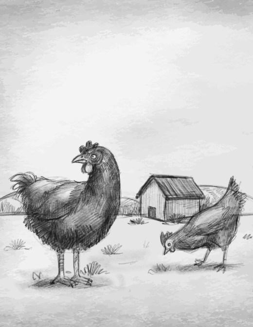 Coloriage grayscale poules de ferme à dessiner