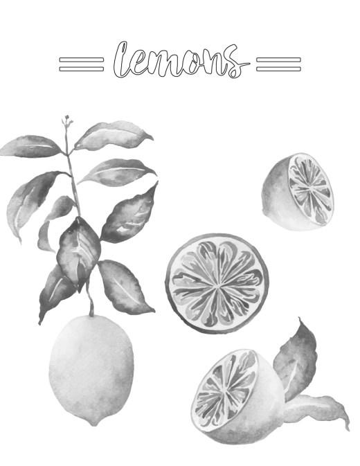 Coloriage grayscale citron frais à imprimer