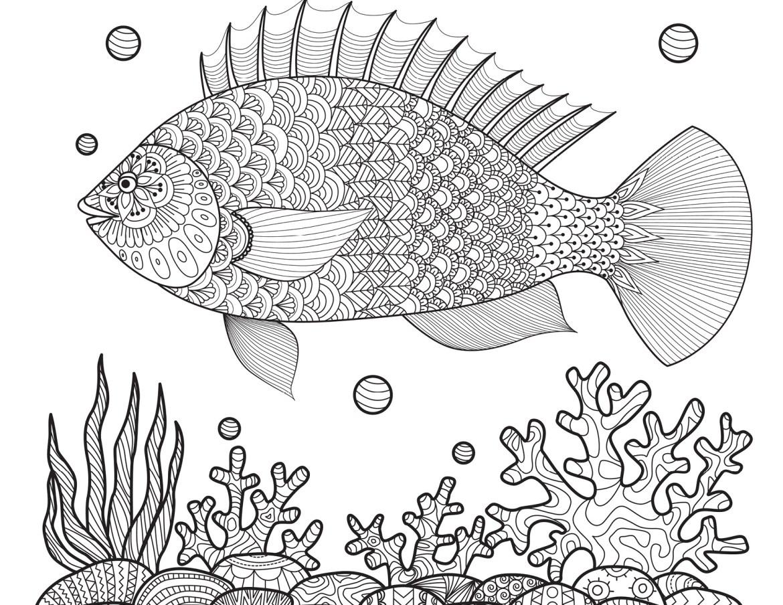 Dessin poisson coloriages t imprimer gratuitement - Dessin de poisson ...