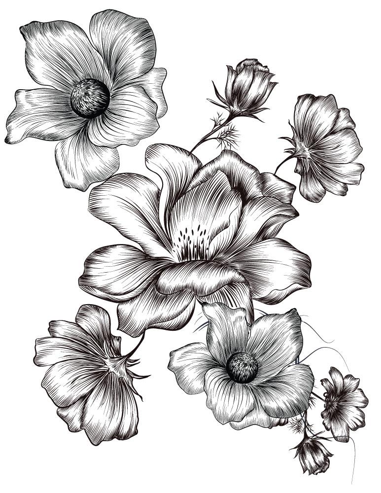 Petites fleurs coloriages été à imprimer image gratuite