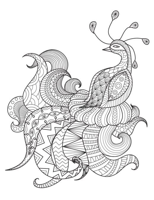 Image gratuite a imprimer bel oiseau par Bimbimkha