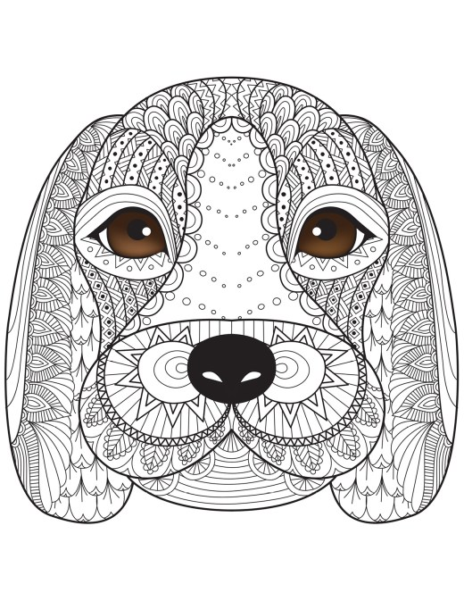 Coloriage de chien par Bimbimkha coloring book pages