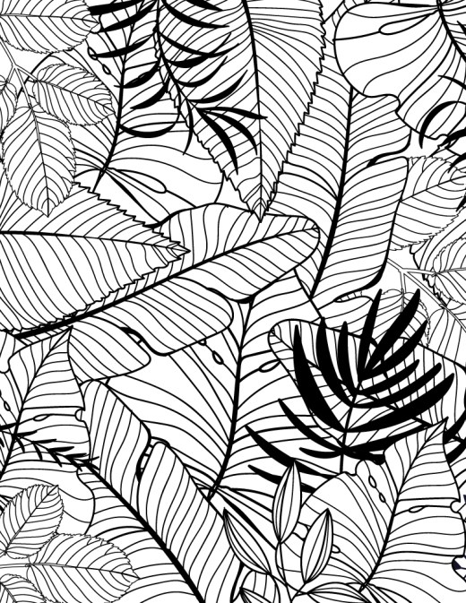 Texture à imprimer feuilles tropicales coloriage pour adulte