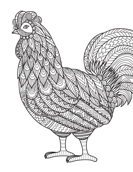 Coloriage pour les grands coq par Bimbimkha