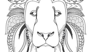 Image Tete De Lion Amerindien A Colorier Artherapie Ca