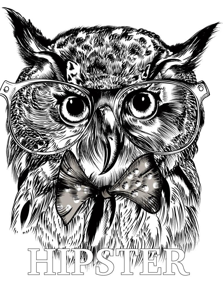 Coloriage de animaux hiboux hipster à dessiner
