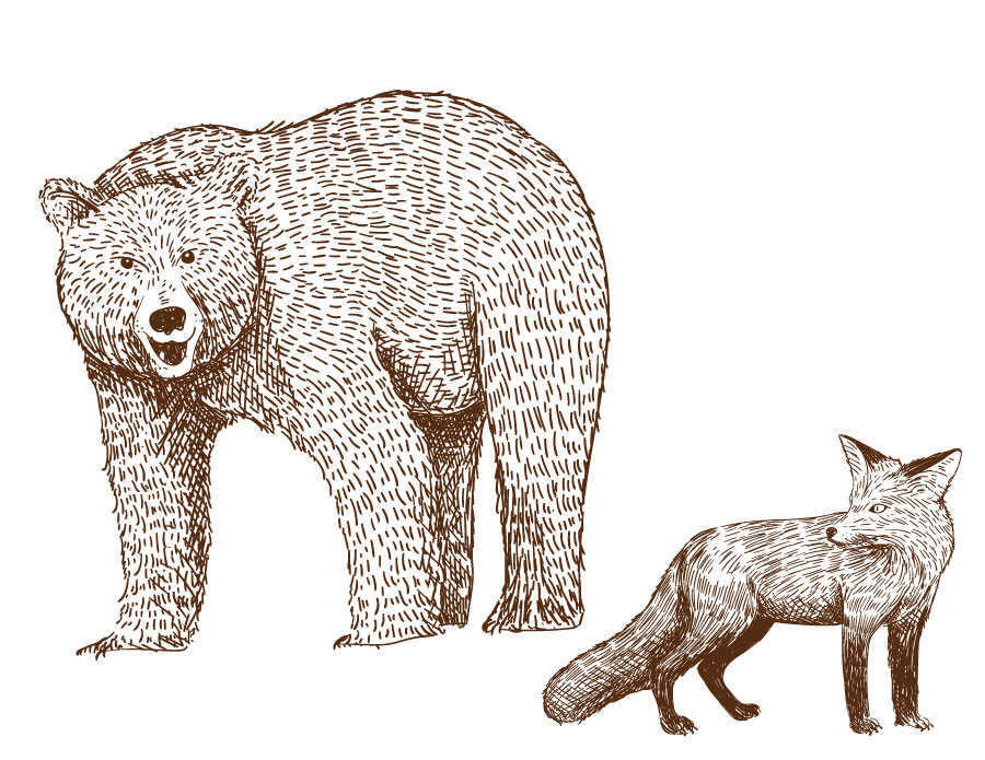 Coloriage a imprimer artherapie ours et renard