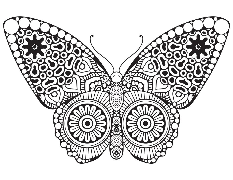 Papillon butterfly dessin a colorier artherapie