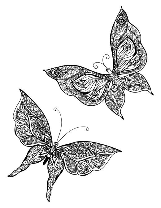 Coloriage papillon pour adulte à imprimer par Macrovector