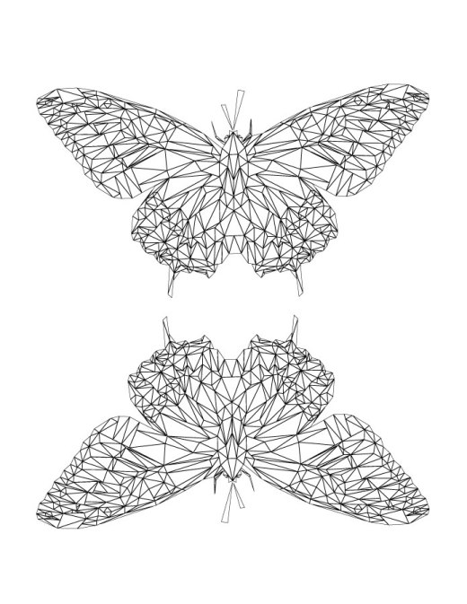 Dessin pour adulte papillon pour imprimer