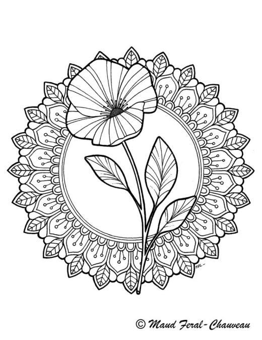 Délicate fleur dessin mandala par Maud Feral