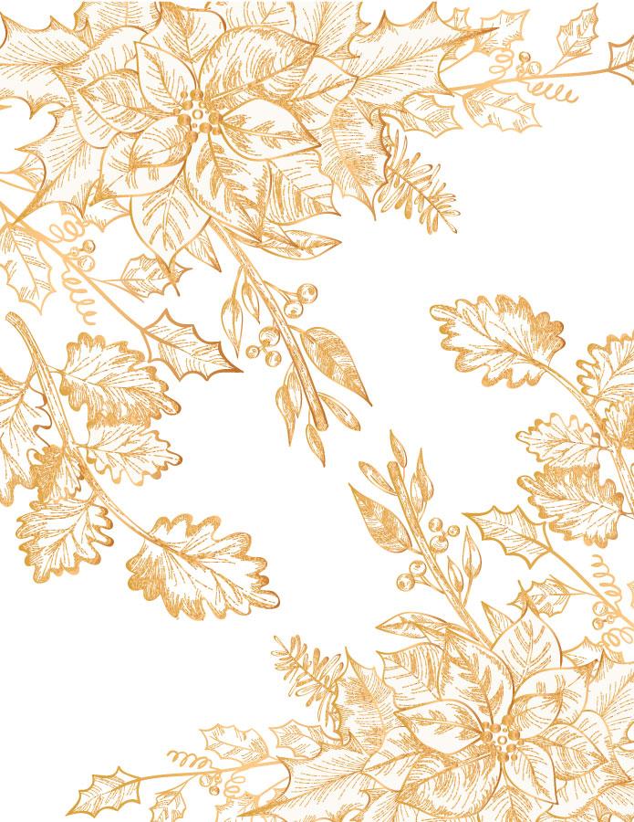 Poinsettia gratuit noël à colorier