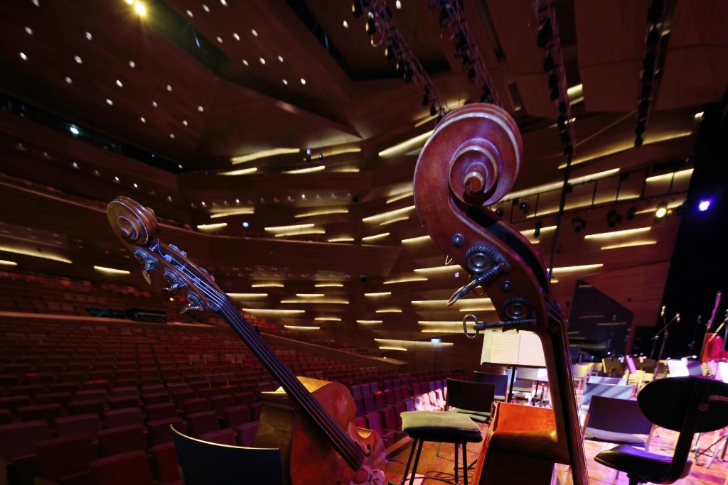 Twenty-two students join professional musicians at the Classical Chill Out concert