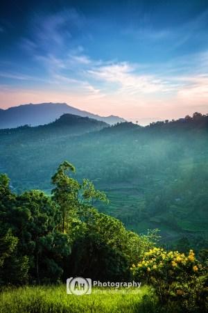 Morning Sri Lanka Highlands