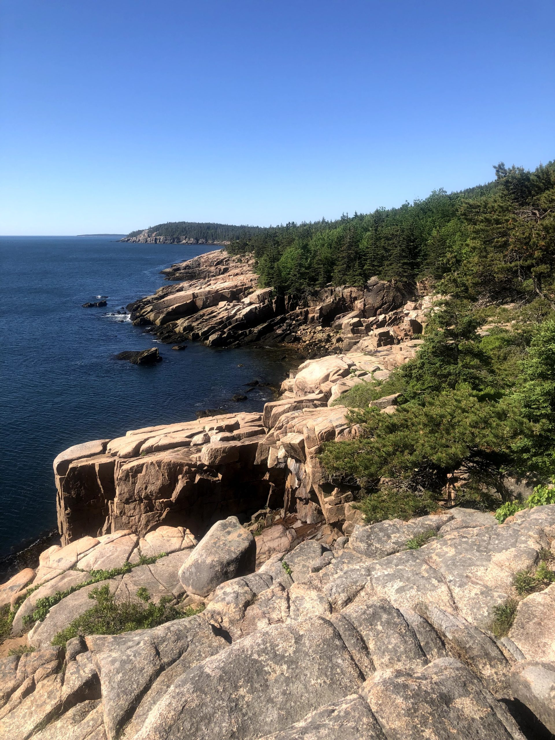 ocean path randonnee acadia national park